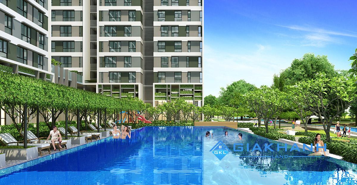 Cho thuê căn hộ chung cư Citi Home